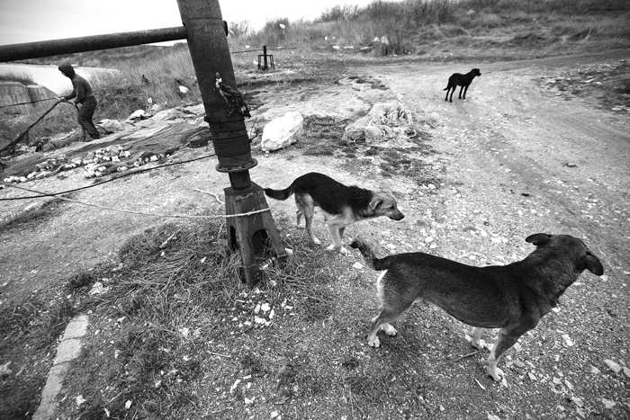 Black Sea, Romania, 2009