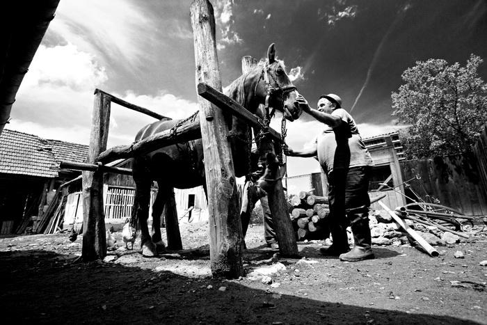 ROMANIA / Arad / Dieci / 2008