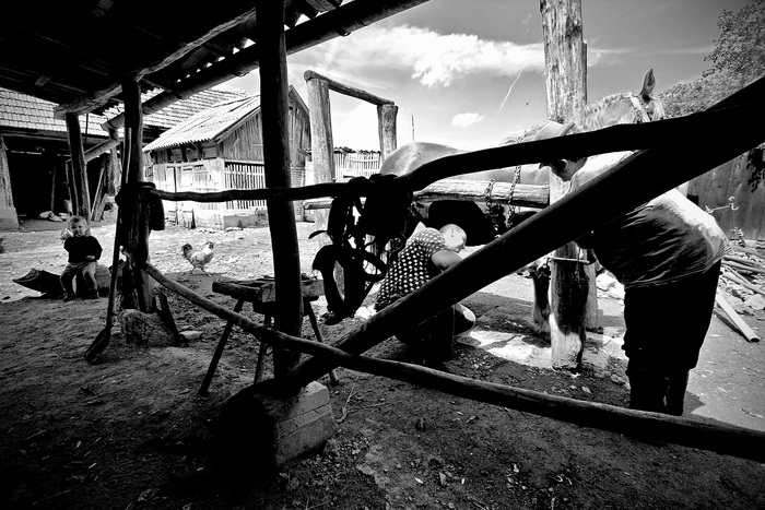 ROMANIA / Arad / Dieci / 2009